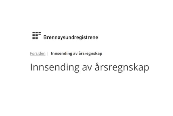 Årsregnskap 2019 - Revisor